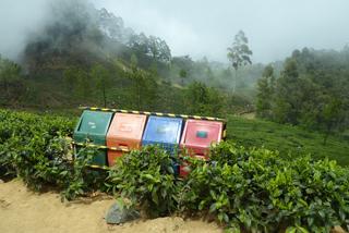 Mülltrennung in den Teeplantagen